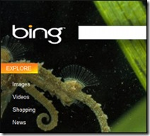 bing_microsoft_onlinetrziste